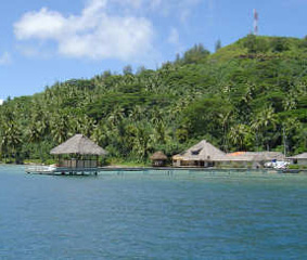 Allemento perle di Tahiti