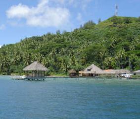 Coltivazioni di perle di Tahiti in Polinesia